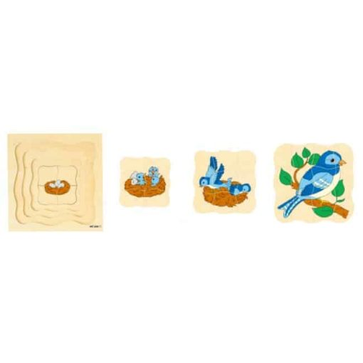 Growth/Life cycle puzzle bird - Educo