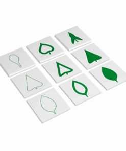Leaf cards - Nienhuis Montessori