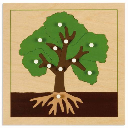 Botany puzzle: tree - Nienhuis Montessori