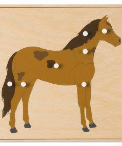 Animal puzzle: horse - Nienhuis Montessori