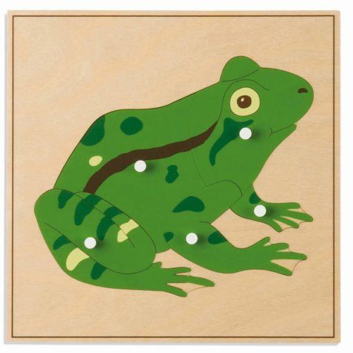Animal puzzle: frog - Nienhuis Montessori