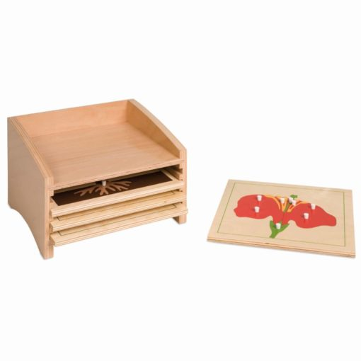 Botany puzzle cabinet: 4 compartments - Nienhuis Montessori