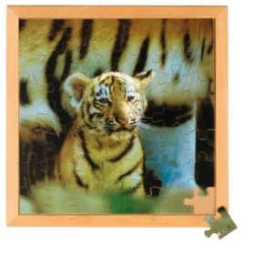 Photo puzzle: tiger - Educo
