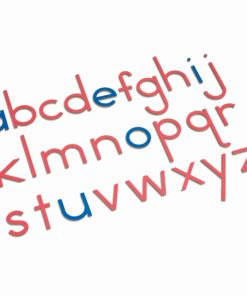 Wooden Movable Alphabet: International Print - Nienhuis Montessori