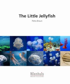 Booklet: the little jellyfish - Nienhuis Montessori