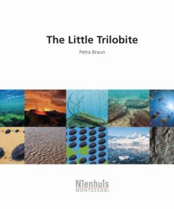 Booklet: the little trilobite - Nienhuis Montessori