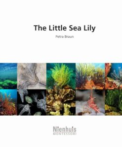 Booklet: the little sea lily - Nienhuis Montessori