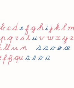 Wooden movable alphabet international cursive / Montessori language material - Nienhuis Montessori