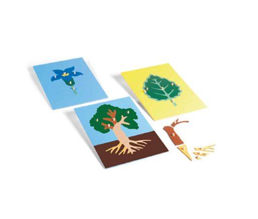 Puzzles : arbre, feuille et fleur - Gonzagarredi Montessori