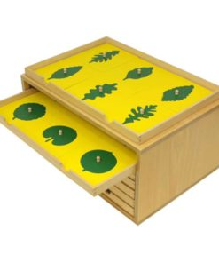 Botany leaf cabinet - Gonzagarredi Montessori