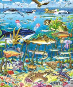 Maxi puzzle marine life in the North Atlantic - Larsen