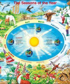 Maxi puzzle the seasons of the year: English - Larsen
