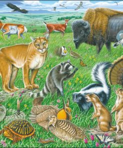 Maxi puzzle wildlife on the American prairie - Larsen