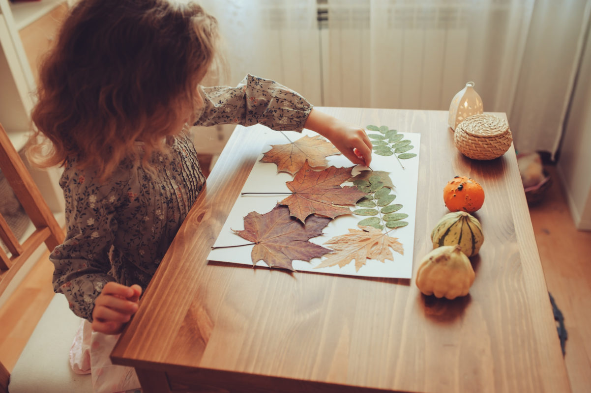 Autumn themed toys - Learning about Autumn and the seasons