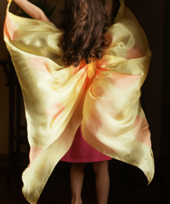 Silk fairy wings Butterfly - Sarah's Silks