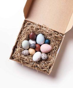 A dozen handmade wooden bird eggs in a box - Moon Picnic & Erzi