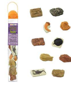 Ancient fossils TOOB / Realistic miniature insect figurines Montessori learning toy- Safari Ltd