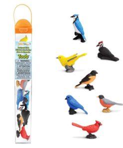 Backyard birds TOOB / Realistic miniature bird figurines Montessori learning toy- Safari Ltd