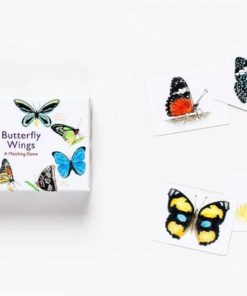 Butterfly Wings- A Matching Game