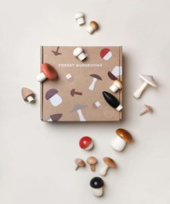 Wooden forest mushrooms in a box - Moon Picnic