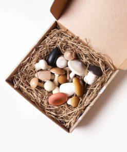 Handmade wooden forest mushrooms in a box - Moon Picnic & Erzi