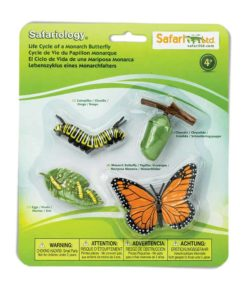 Life cycle of a Monarch butterfly figurines set - Safari Ltd