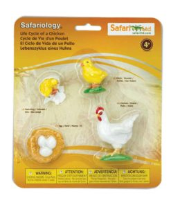 Life cycle of a chicken figurines set - Safari Ltd learning toy