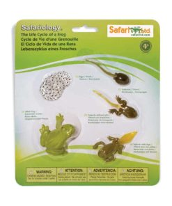 Life cycle of a frog figurines set - Safari Ltd learning toy