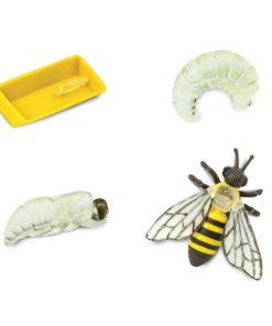 Life cycle of a honey bee figurines set Safari Ltd
