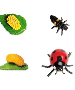 Life cycle of a ladybug figurines set - Safari Ltd learning toy