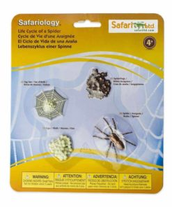 Life cycle of a spider figurines set - Safari Ltd learning toy
