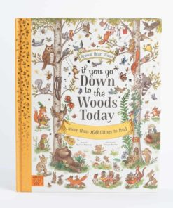 Poetry book if you go down to the woods today by Rachel Piercey