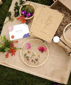 Create pressed flower art plastic-free DIY craft kit - Lily & Mel