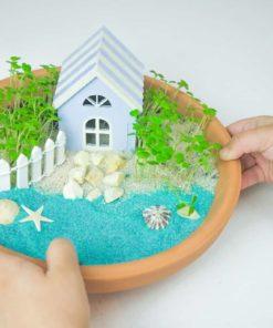 Create your mini beach garden plastic-free DIY craft kit - Lily & Mel