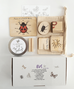 Bug activity pack - 5 Little Bears