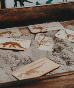 Dinosaur Digs Kit - 5 Little Bears