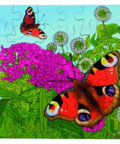 Layer puzzle life cycle: butterfly - Rolf