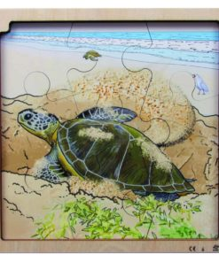 Layer puzzle life cycle turtle - Rolf